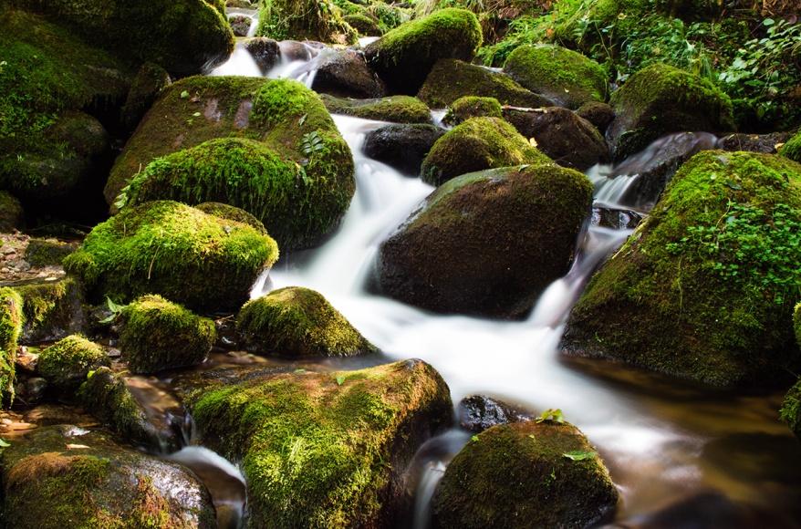 Eau qui coule dans la rivière