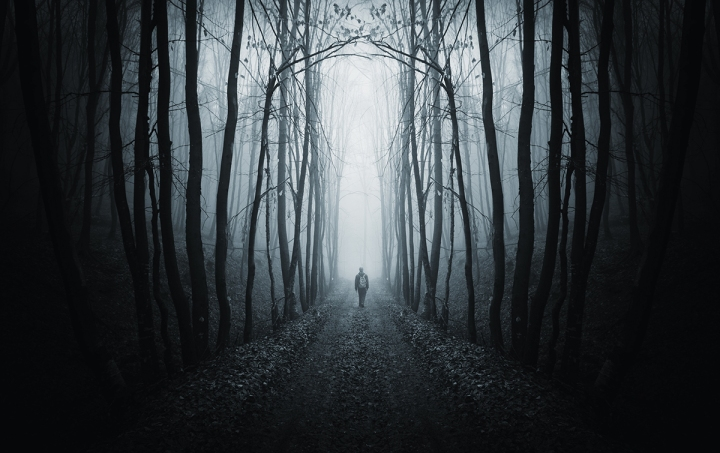 man walking on path in strange dark forest with fog